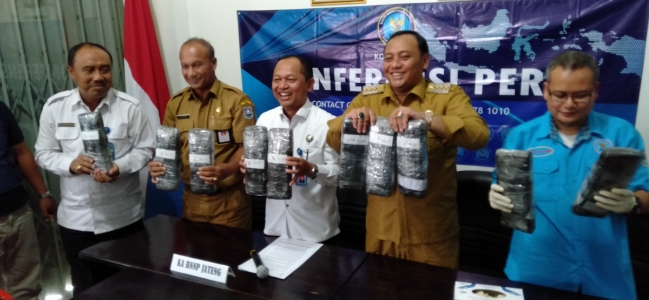 Tiga Pengedar Ganja 9,9 Kg Berhasil Diamankan Tim Gabungan BNN